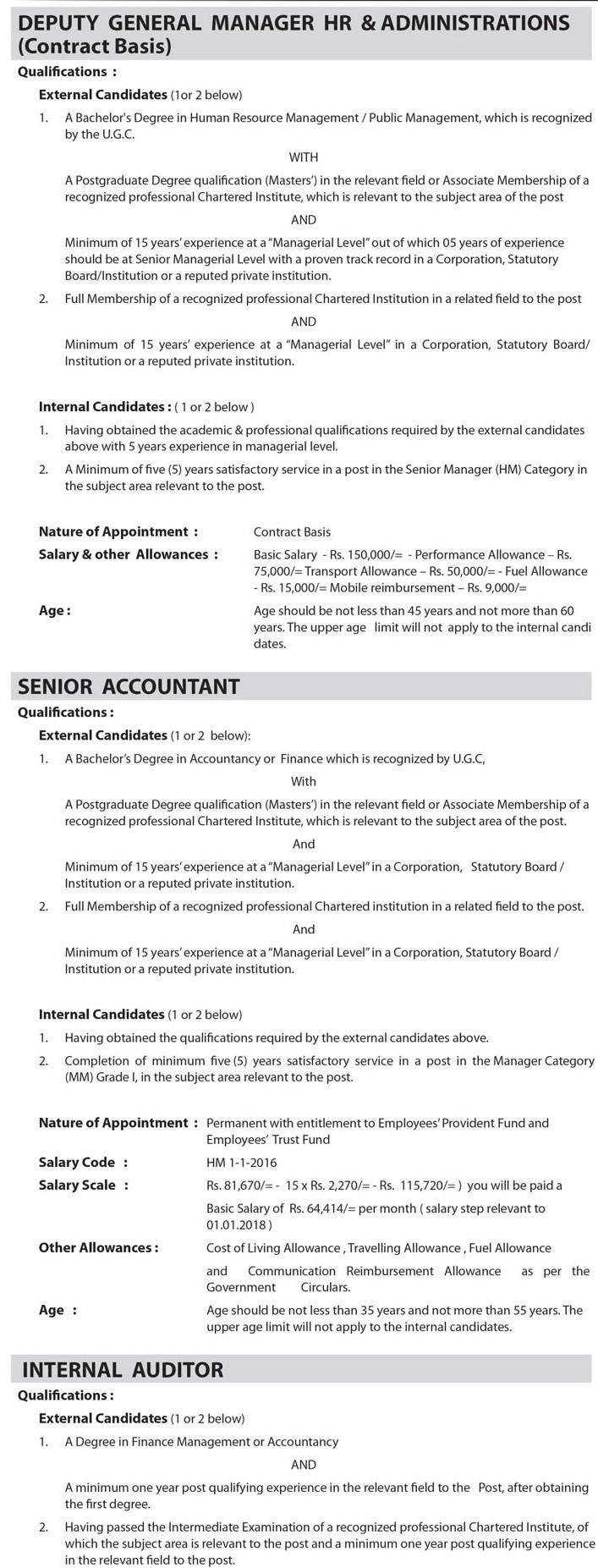 Deputy General Manager, Senior Accountant, Internal Auditor